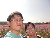 假日去私房景點看花海囉~:CIMG3156.JPG
