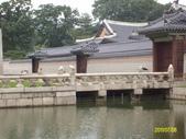韓國之旅:照片 405.jpg