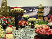 花博之旅:DSC03129.JPG