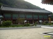 韓國之旅:照片 135.jpg