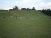 鹿野,初鹿牧場,原生藥用植物園:2013-08-26 060.jpg