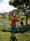 鹿野,初鹿牧場,原生藥用植物園:2013-08-26 242.jpg
