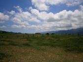 鹿野,初鹿牧場,原生藥用植物園:2013-08-26 249.jpg
