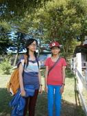 鹿野,初鹿牧場,原生藥用植物園:2013-08-26 251.jpg