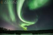 2015-北極酷寒-阿拉斯加探險之旅:IMG_0276.jpg