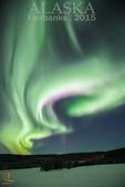 2015-北極酷寒-阿拉斯加探險之旅:IMG_0297 拷貝.jpg