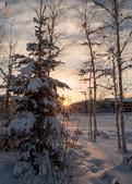 2015-北極酷寒-阿拉斯加探險之旅:IMG_9573_副本.jpg