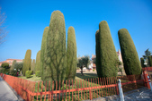 義大利蜜月12日:IMG_6226.jpg