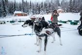 2015-北極酷寒-阿拉斯加探險之旅:IMG_9515_副本.jpg
