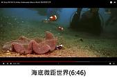 王衡:12.海底微距世界(6-46).jpg