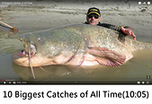 王衡:14.10 Biggest Catches of All Time(10-05).jpg