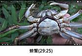 王衡:8.螃蟹(29-25).jpg