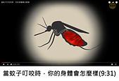 王衡:6.當蚊子叮咬你時,你的身體會怎麼樣(9-31).jpg