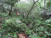 20151011內西勢坑古道:IMG_0159.JPG