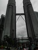 馬來西亞雙子星:DSCI0129.JPG