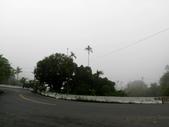 碧湖風景:DSCI0605.JPG