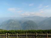 碧湖風景:DSCI0542.JPG