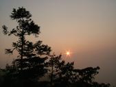 阿里山之美:DSCF4149.JPG