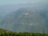 碧湖風景:DSCI0543.JPG