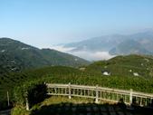 碧湖風景:DSCI0553.JPG