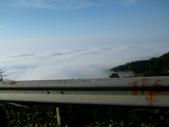 碧湖風景:DSCI0570.JPG