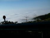 碧湖風景:DSCI0571.JPG