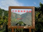碧湖風景:DSCI0572.JPG