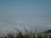 碧湖風景:DSCI0573.JPG