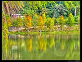 桃園市大溪區月眉人工濕地生態公園(3顆星):1129 171.JPG