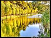 桃園市大溪區月眉人工濕地生態公園(3顆星):1101 050.JPG