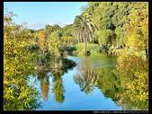 桃園市大溪區月眉人工濕地生態公園(3顆星):1101 030.JPG