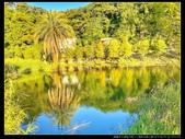 桃園市大溪區月眉人工濕地生態公園(3顆星):1101 040.JPG