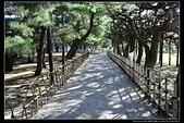 (日本香川縣栗林公園):TB8A4221.JPG