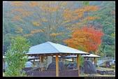(日本香川縣內場池公園):TB8A4164.jpg