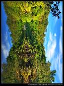 桃園市大溪區  三民豆麥埤塘(3顆星):IMG_E7119.jpg