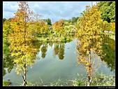桃園市大溪區月眉人工濕地生態公園(3顆星):1129 162.JPG