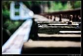 苗栗縣三義鄉 內社川鐵橋 隧道(4顆星):TB8A2007.JPG