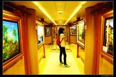 (藍寶石公主號 ):郵輪藝廊