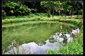 桃園市大溪區汙水廠自然水質淨化濕地(3顆星):_B8A5333.JPG