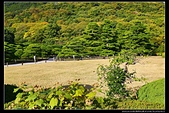 (日本香川縣栗林公園):TB8A4207.JPG