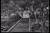 花蓮縣鳳林鎮 林田山林業文化園區(4顆星):TB8A7996.JPG