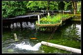 苗栗縣南庄鄉高山青鱒魚養殖場(3顆星):