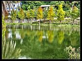 桃園市大溪區月眉人工濕地生態公園(3顆星):1129 169.JPG