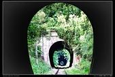 苗栗縣三義鄉 內社川鐵橋 隧道(4顆星):TB8A1972.JPG