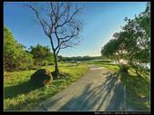 桃園市大溪區月眉人工濕地生態公園(3顆星):1101 038.JPG