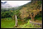 宜蘭縣大同鄉 明池森林遊樂區(5顆星):