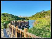 桃園市大溪區月眉人工濕地生態公園(3顆星):1101 032.JPG