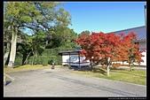(日本香川縣栗林公園):TB8A4193.JPG