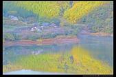 (日本香川縣內場池公園):TB8A4152.jpg