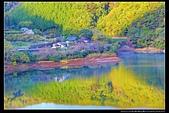 (日本香川縣內場池公園):TB8A4153.jpg